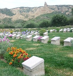 Gallipoli - Ari Burnu Cemetery